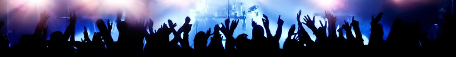 cropped-concert-crowd.jpg